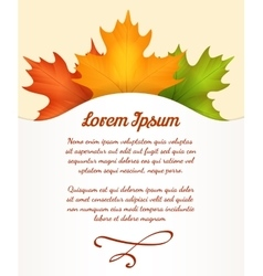 Autumn leaves poster vector image