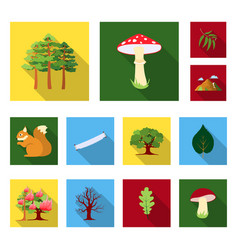 Forest and nature flat icons in set collection for vector