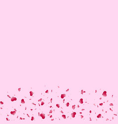 heart falling confetti isolated pink background vector image