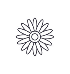 sun flower line icon concept sun flower flat vector image