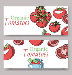 tomatoes organic sauce background set banners vector image