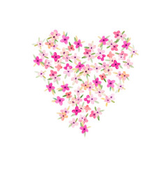 watercolor flower heart vector image