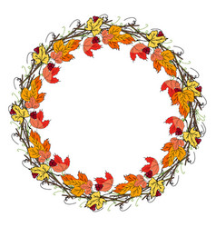 wreath of hand drawn mountain ash and autumn leave vector image