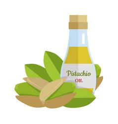 pistachio oil in flat design vector image vector image