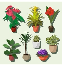 House plants set vector image vector image