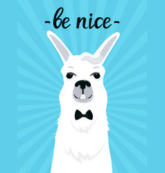 a funny llama with a bang in a bow tie smiles be vector image