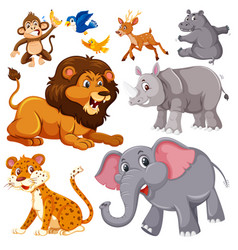A set of wild animals vector