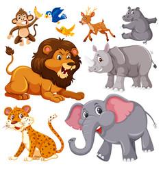 a set of wild animals vector image