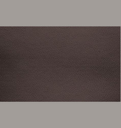 Background texture brown natural leather grain vector