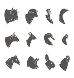 farm animal heads icon set butchery logo and vector image