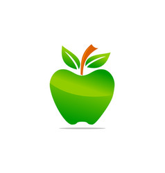 green apple shine template vector image