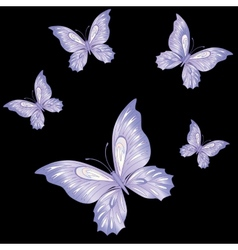 Lace butterfly cut out of paper vector