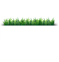 seamless design with green grass vector image