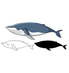 Set whale cartoon vector