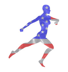 stars and stripes runner vector image