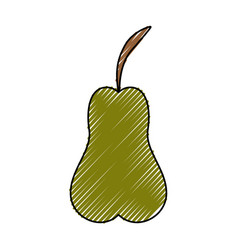Delicious pear fruit vector