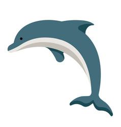 Dolphin flat vector