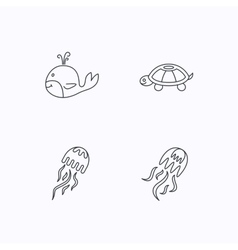 Turtle and jellyfish icons Jellyfish vector image