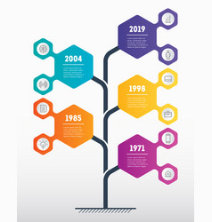 vertical timeline infographics the development vector image