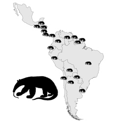 Giant anteater range vector image vector image
