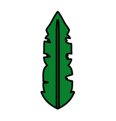 Color botanic tropical leaf natural style vector