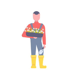 man gardener holding box with blooming flowers vector image