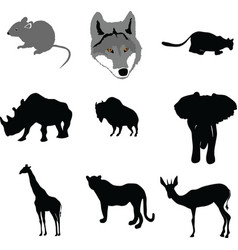 mouse outline painting paw pest pet rat tai vector image