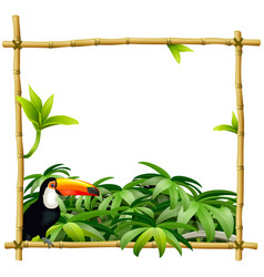 tropic bamboo frame vector image