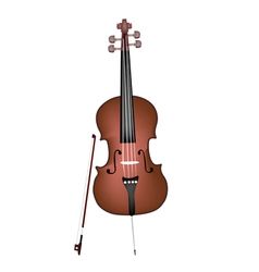 A Beautiful Brown Cello on White Background vector image