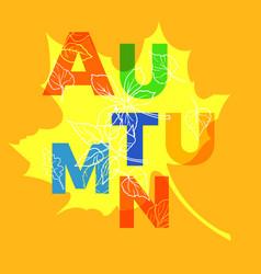 autumn template vector image