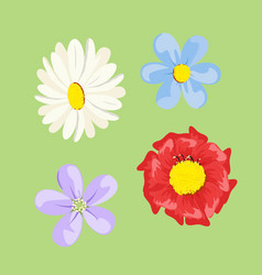 set of colored flowers vector image vector image