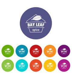 bay leaf spice icons set color vector image