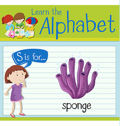 Flashcard letter S is for sponge vector