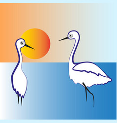 Two herons stand in the lake vector