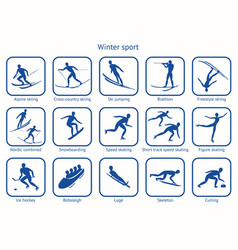 Winter sport and game vector