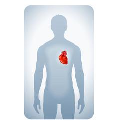 Heart highlighted vector