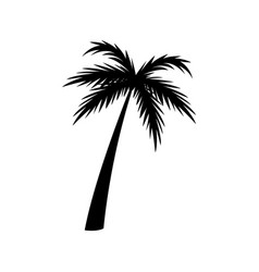 silhouette palm tree tropical natural vector image