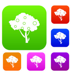 apples on apple tree branches set collection vector image