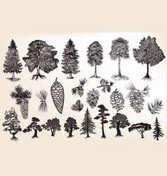 collection or set of hand drawn trees reto style vector image