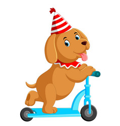 Cute dog on scooter vector
