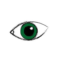 eye human optical look watch icon vector image