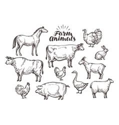 Farm sketch collection animals vector