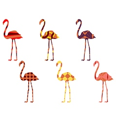 Flamingo pattern Flamingo isolated vector