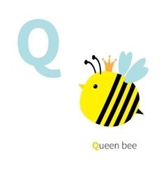 Letter q queen bee zoo alphabet english abc vector