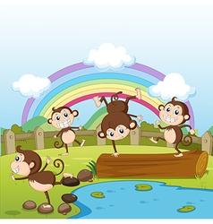 Monkeys and a rainbow vector image