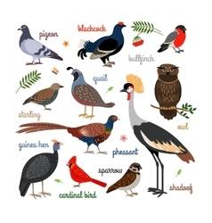 bird icons vector image vector image