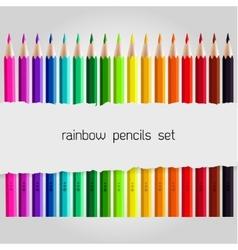 Big color pencil set vector image vector image