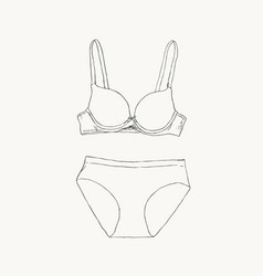 women underwear panties and bra sketch vector image