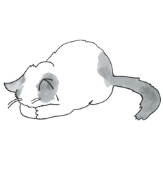 High quality of cute kitty vector image