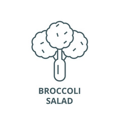broccolisalad line icon broccolisalad vector image